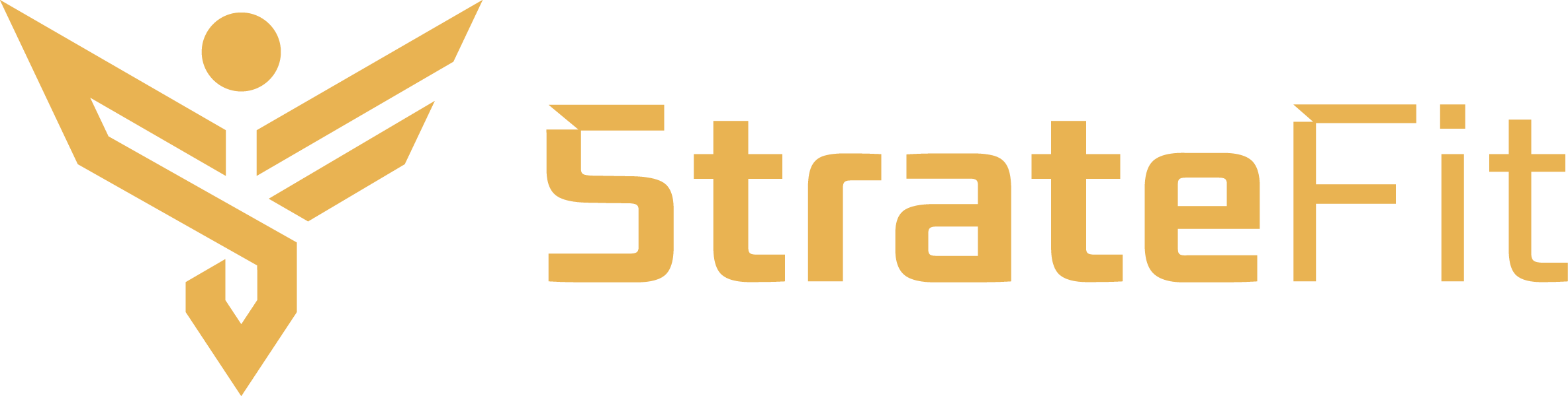 Stratefit